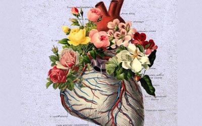 Semana Internacional da Consciência em Essências Florais